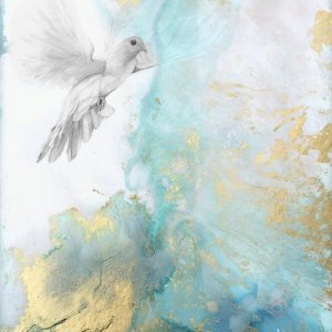 Dove 300x300 - Watching 63 x 44cm